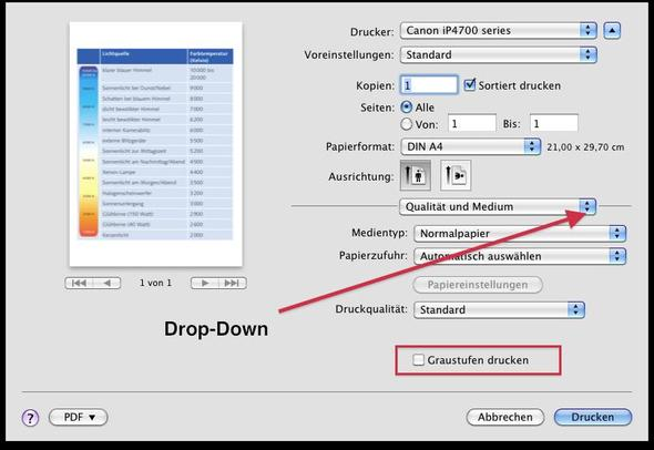 Druckdialog - (Apple, Mac, Macbook)