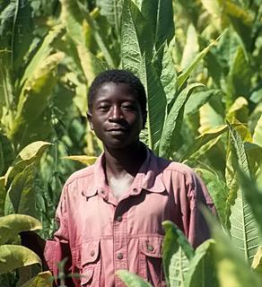 Afrikaner in Malawi - (Afrika, Genetik, Sonnenbrand)
