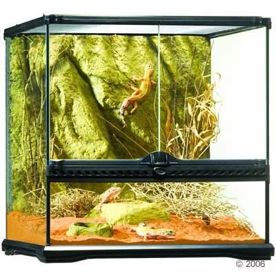 Terrarium - (Aquarium, Terrarium)