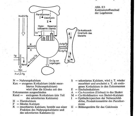 Quelle: Tierernährung, Gebhard - (Eier, Entwicklung, Hühner)