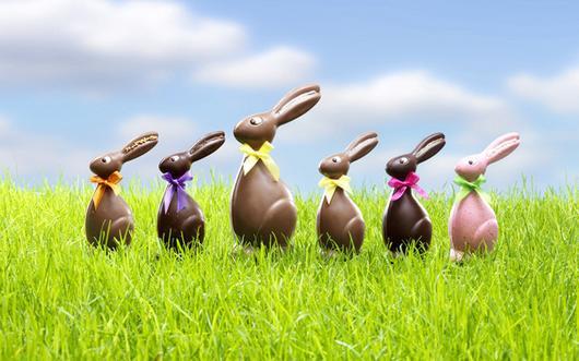 Guten Morgen Community An Welche Osternestsuche Erinnert