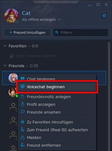 Freunde über Das Battlenet Anrufen Blizzard Computer Internet