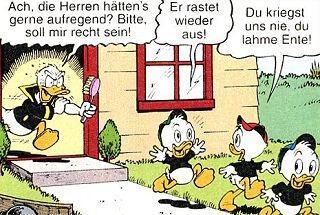 Normaler Alltag bei Donald und Tick, Trick und Track - (Familie, Duck, Ducks)