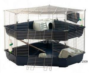 ich brauche einen meerschweinchenk fig der f r 4 meerschweinchen ausreicht k fig. Black Bedroom Furniture Sets. Home Design Ideas