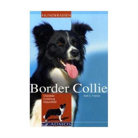 der border collie - (Hund, hüten)