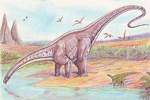 Brontosaurus - (Wissen, Dinosaurier, Kreidezeit)
