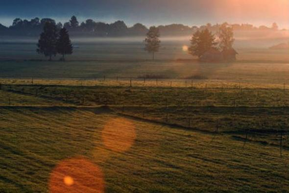 Blendenflecken - (Fotografie, Sonne)