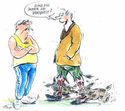 tolleranz kennt keine grenzen - (Hund, Wald, Leinenpflicht)