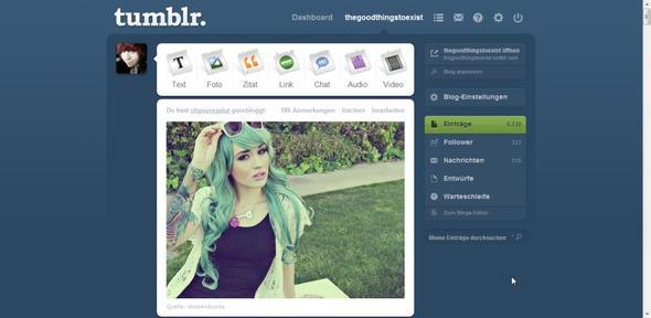 eigene Seite, wo Beiträge von einem selbst aufgelistet sind.  - (Blog, Tumblr, Community)
