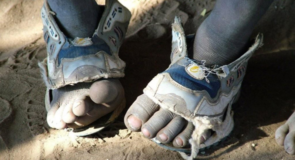 - (Mode, Schuhe, Sneaker)