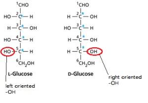 Was ist Alpha-D-Glucose? (Schule, Chemie, Biologiestudium)