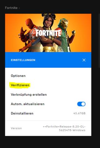 - (Computer, Fehlermeldung, Fortnite)