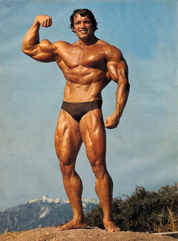 Wie Alt Ist Arnold Schwarzenegger