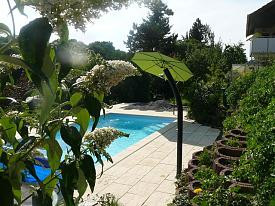 Wie teuer ist es, in seinem Garten ein Pool zu bauen ...