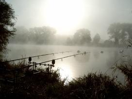 Bilduntertitel eingeben... - (Fische, angeln, knicklichter)
