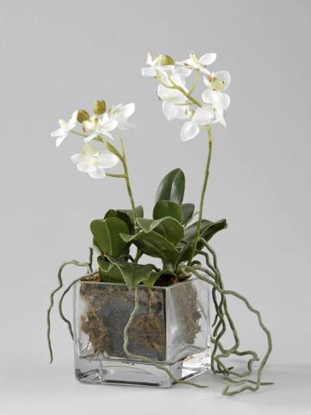 wo erh lt man gro e kunstpflanzen die t uschend echt aussehen pflanzen einkaufen einrichtung. Black Bedroom Furniture Sets. Home Design Ideas