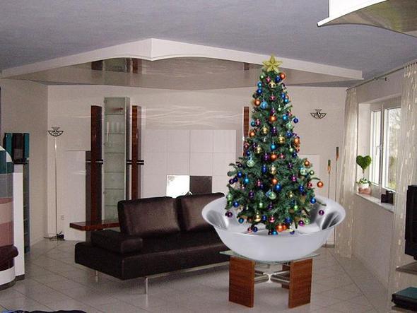 weihnachtsbaum oder kein weihnachtsbaum katze. Black Bedroom Furniture Sets. Home Design Ideas