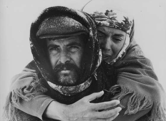 Kennt jemand gute türkische Filme? (Film, Filme und Serien)