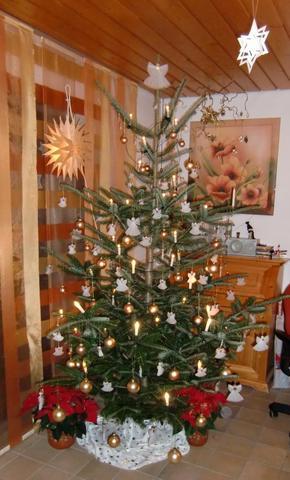 Weihnachtsbaum 2010 - (gutefrage.net, Weihnachten, Weihnachtsbaum)
