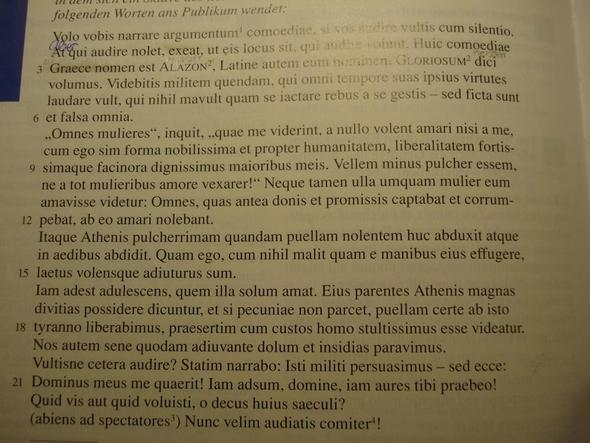 Text L 33 - (Schule, Latein, Cursus Ausgabe A)