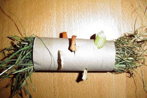 Papprolle zum Beschäftigen - (Haustiere, Kaninchen, Langeweile)