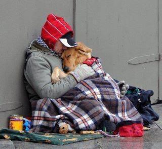 Obdachloser mit Hund - (Psychologie, Menschen, Leben)