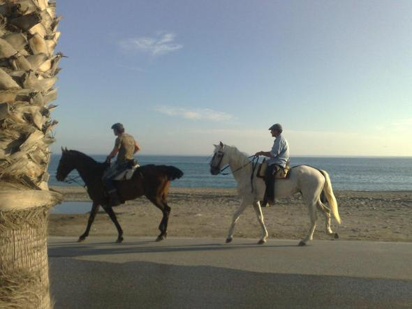 andalusische Reiter - (Urlaub, Pferde, Reiten)