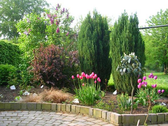 Meine Sitzecke - (Garten, gartenbau, Terasse)