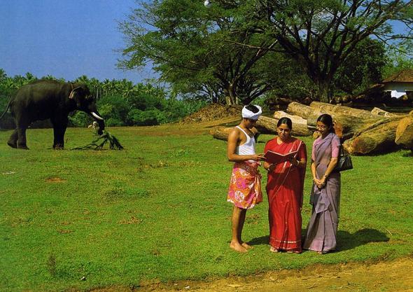Die Botschaft der Bibel wird auch in Indien verbreitet - (Glaube, zj)