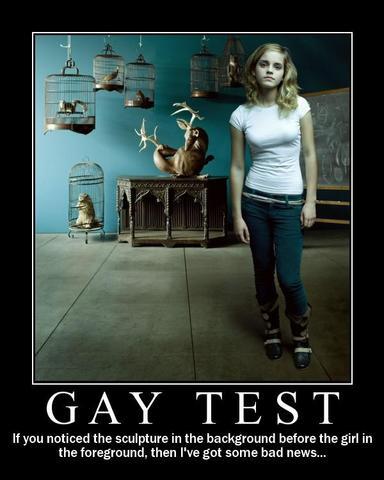 gay test - (Freizeit, Liebe, Sexualitaet)
