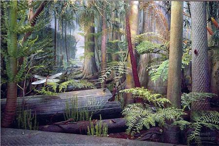 Vegetation im Karbon und Riesenlibelle - (Leben, Geschichte, Wissen)