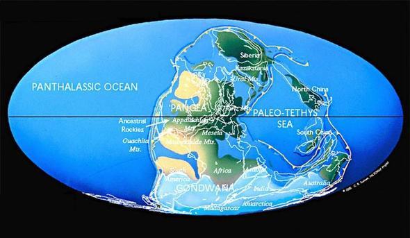 Die Erde im Karbon - (Leben, Geschichte, Wissen)
