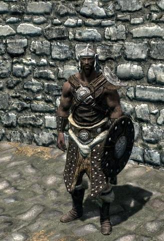 Studded Armor - (Spiele, Computerspiele, skyrim)