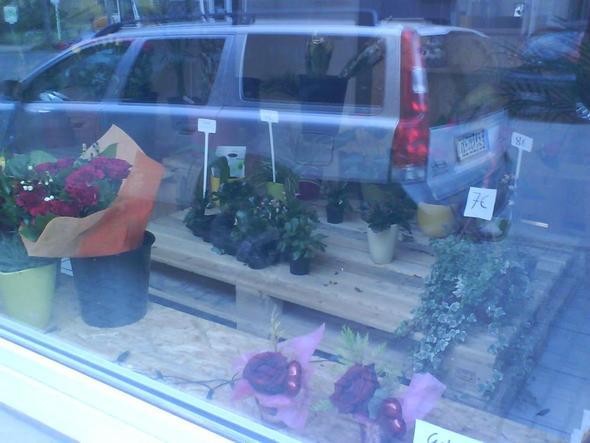 Blumengeschäft - (Steuern, Finanzamt, schätzung)