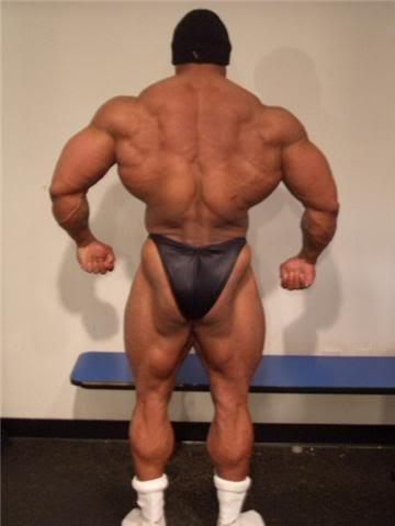 Myostatin - Man - (Muskeln, Muskelaufbau)