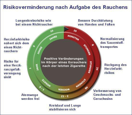 Phasen der Regeneration nach dem Rauchstopp - nikotinsucht.kelsshark.com