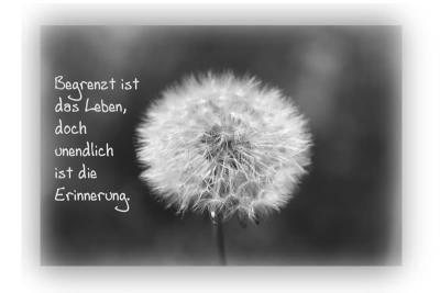 Beileidsbekundung Trauersprüche Für Beileidsbekundungen.