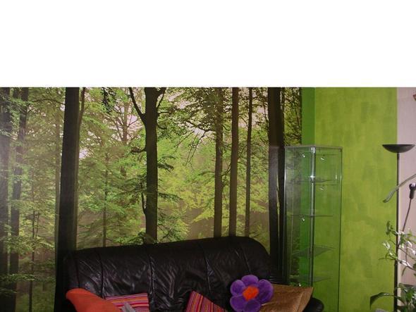 Grün mit Wald - (Farbe, Zimmer)