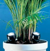 welche pflanzen wachsen in einem bad ohne wirkliches tageslicht badezimmer wenig tageslicht. Black Bedroom Furniture Sets. Home Design Ideas