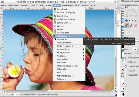 Entsättigen-Werkzeug auswählen - (Bilder, Foto, Fotografie)