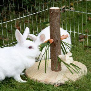 Knabberbaum - (Kaninchen, Bau Ideen, Beachäftigung für Kaninchen)