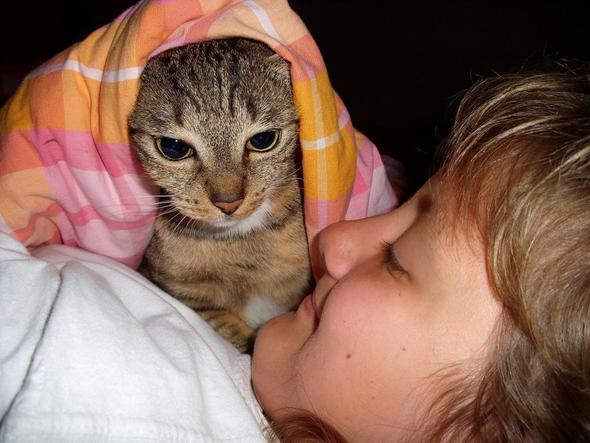 Liebe - (Krankheit, Augen, Katze)