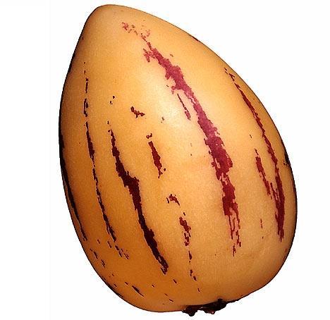Pepino - (Obst, Exotisch)
