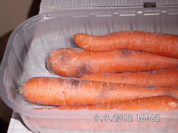 Möhren 2 Tage nach dem Kauf - (Lebensmittel, Haltbarkeit, moehren)