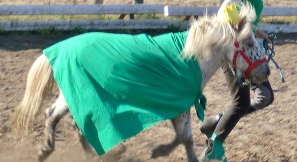Mein Kleiner ... - (Pferde, reiten, Kostüm)