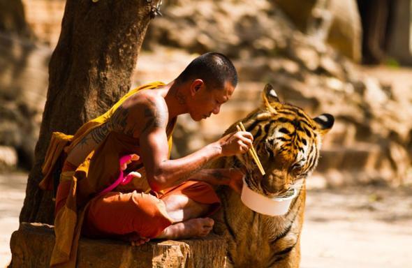 Monk - (Facebook, Bilder, Kamera)