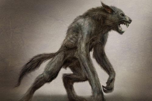 Werwolf ~ - (Kostüm, Halloween)