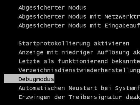 Debugmodus - (PC, Acer, Absturz)