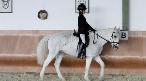 Zopf - (Pferde, Mähne, einflechten)