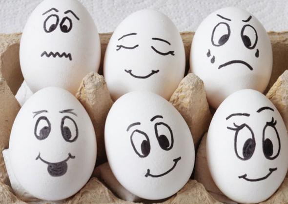 Eier - (Geschenk, Weihnachten, Kochen)